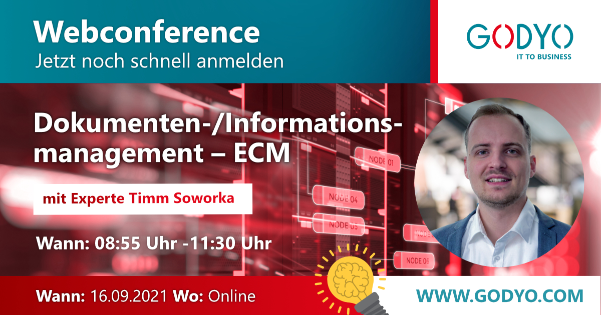 Dokumenten- und Informationsmanagement – ECM